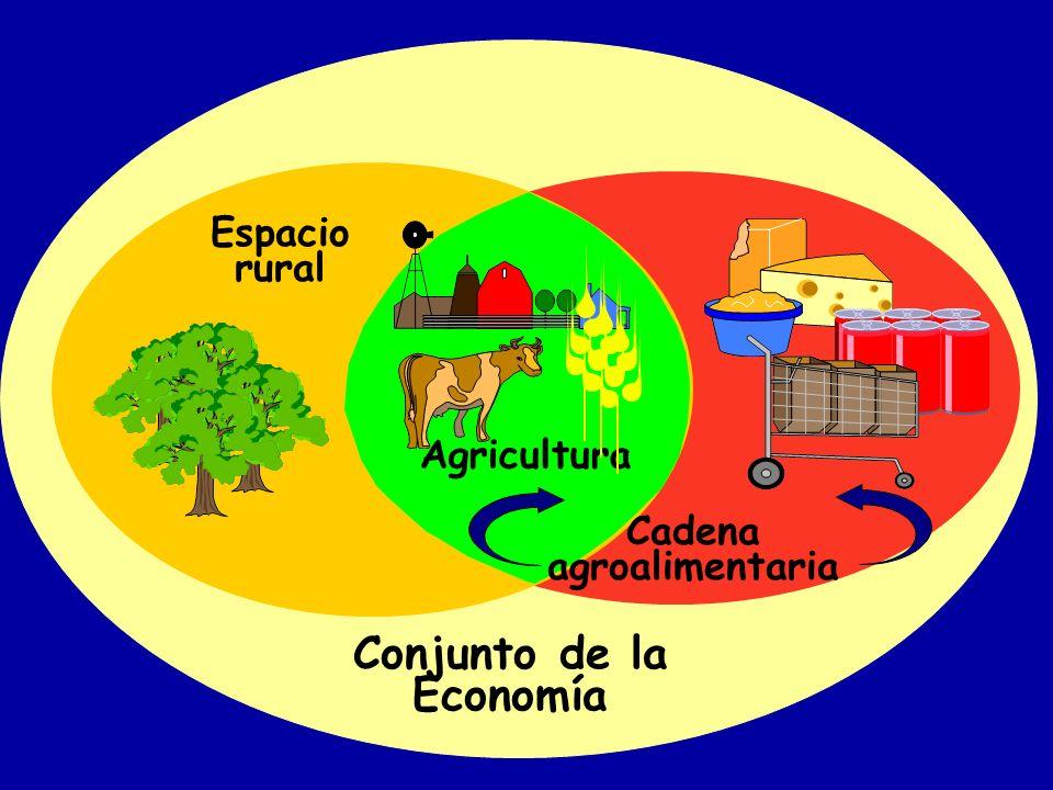 UN CONCEPTO RELACIONADO: AGRONEGOCIOS (AGRIBUSINESS) SUMA DE LAS OPERACIONES RELACIONADAS CON LA ELABORACIÓN Y DISTRIBUCIÓN DE INSUMOS PARA LAS FINCAS 1, LAS OPERACIONES DE PRODUCCIÓN EN LAS FINCAS, EL ALMACENAMIENTO, EL PROCESAMIENTO Y LA DISTRIBUCIÓN DE BIENES DEL CAMPO Y DE LOS ELABORADOS A PARTIR DE ELLOS (DAVIS, J Y GOLDBERG, R.