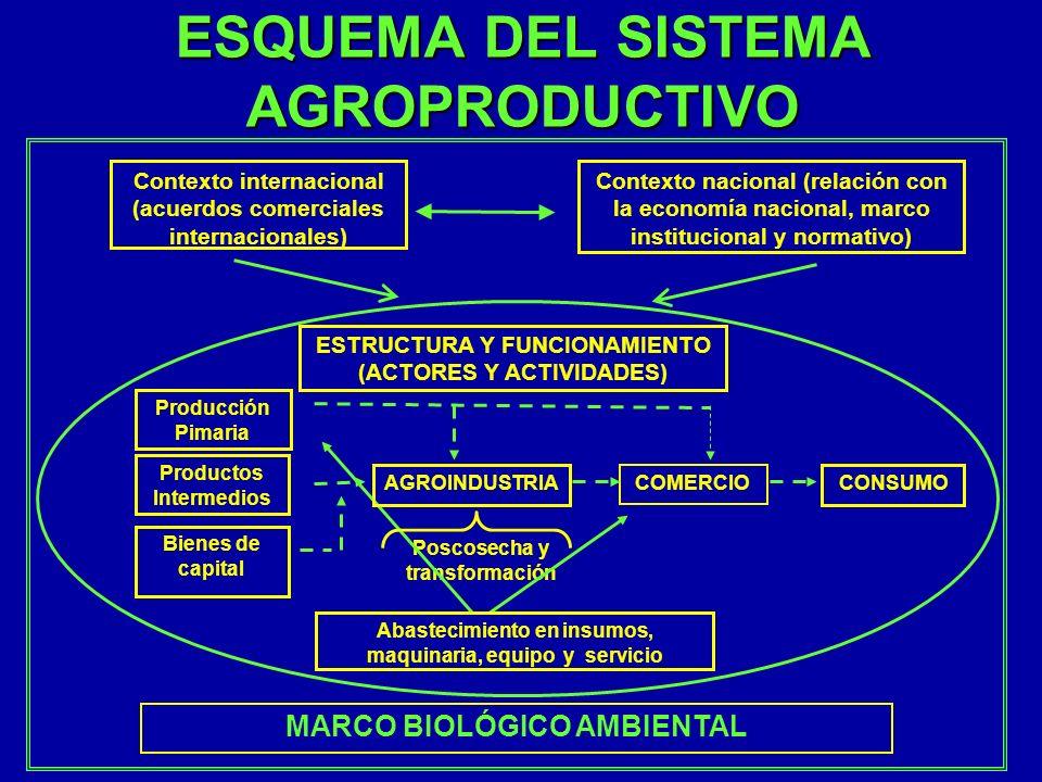ESQUEMA DEL SISTEMA AGROPRODUCTIVO Poscosecha y transformación Contexto internacional (acuerdos comerciales internacionales) Contexto nacional (relaci