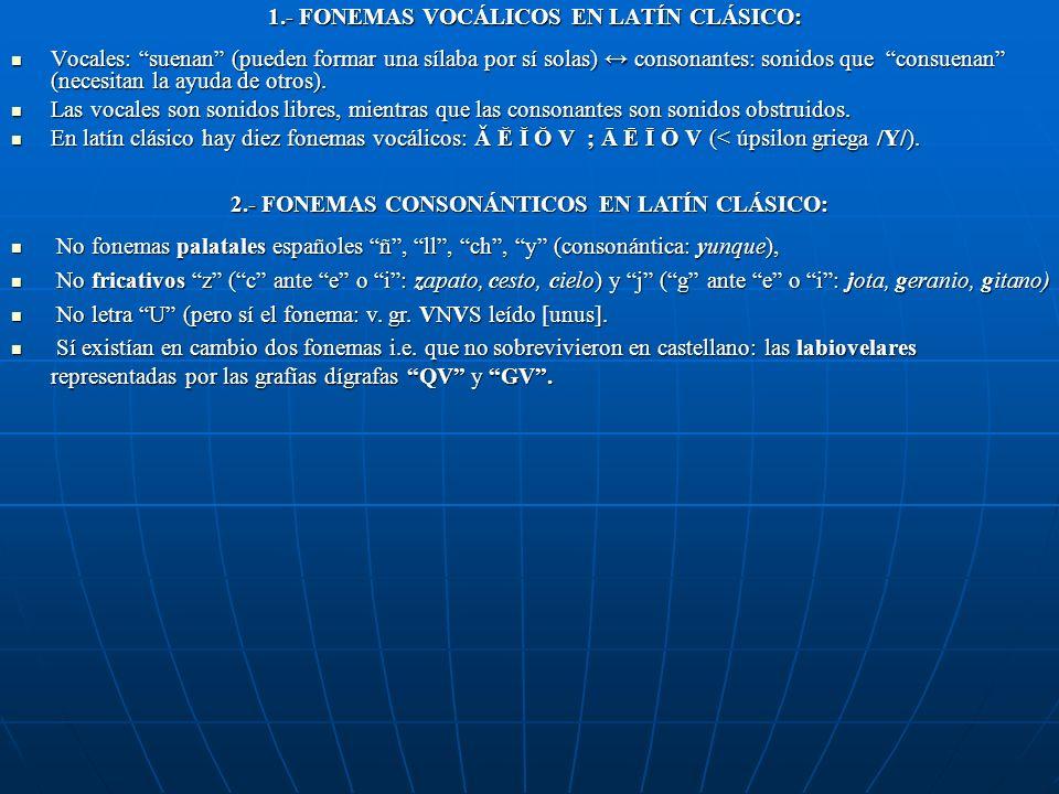 A B C D E F G H I K L M N O P Q R S T V X Y Z Diferencias con el etrusco: Se escribe al revés por la distinta orientación de la escritura en etrusco (
