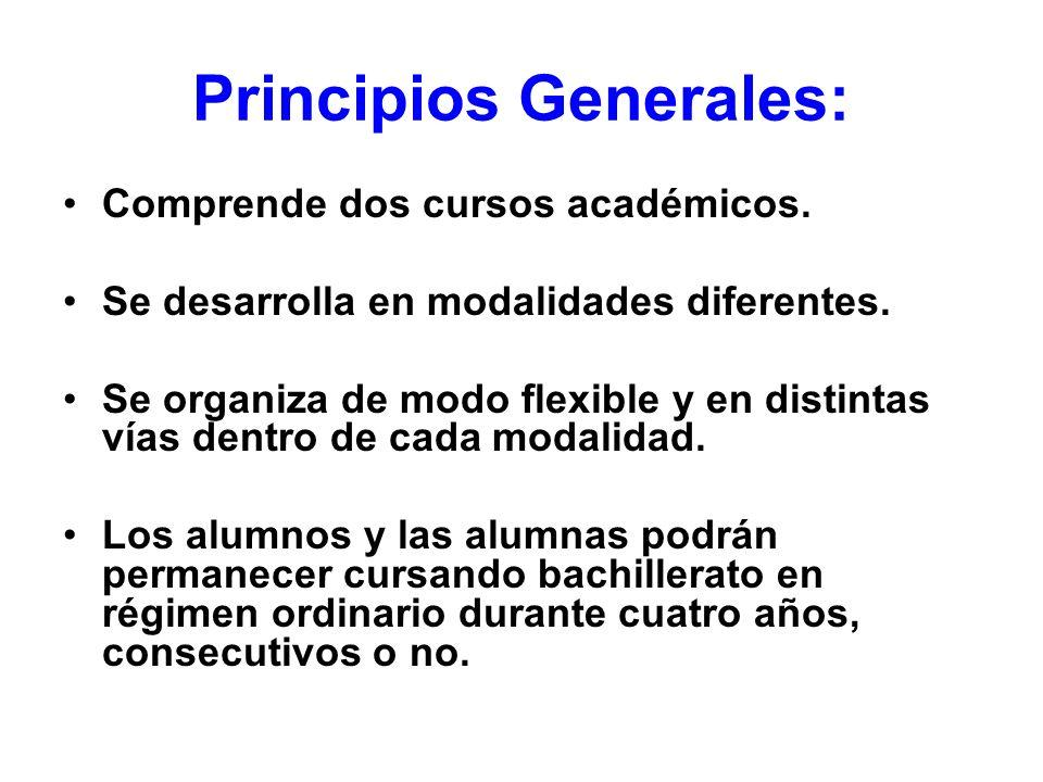 Principios Generales: Comprende dos cursos académicos. Se desarrolla en modalidades diferentes. Se organiza de modo flexible y en distintas vías dentr