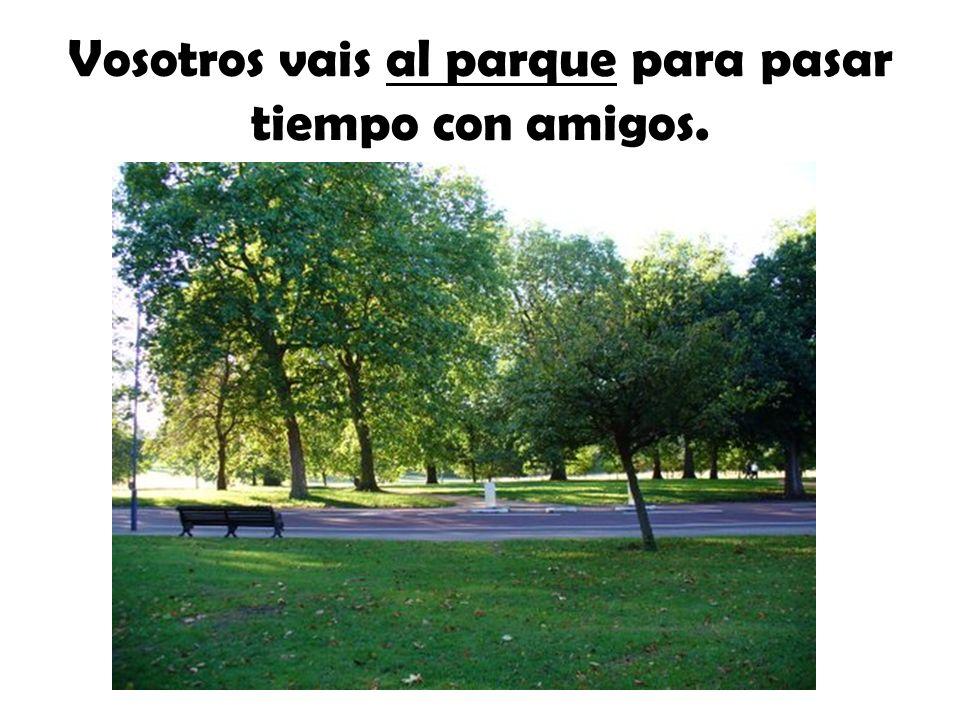 Vosotros vais al parque para pasar tiempo con amigos.