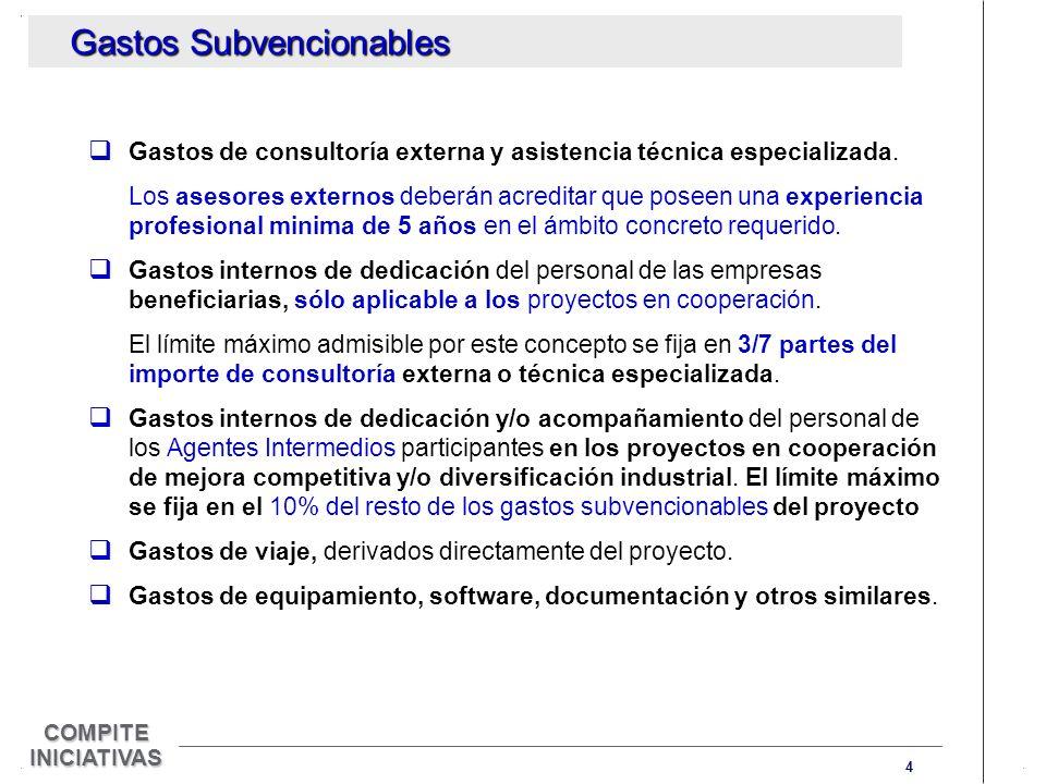 4 COMPITE INICIATIVAS Gastos de consultoría externa y asistencia técnica especializada.