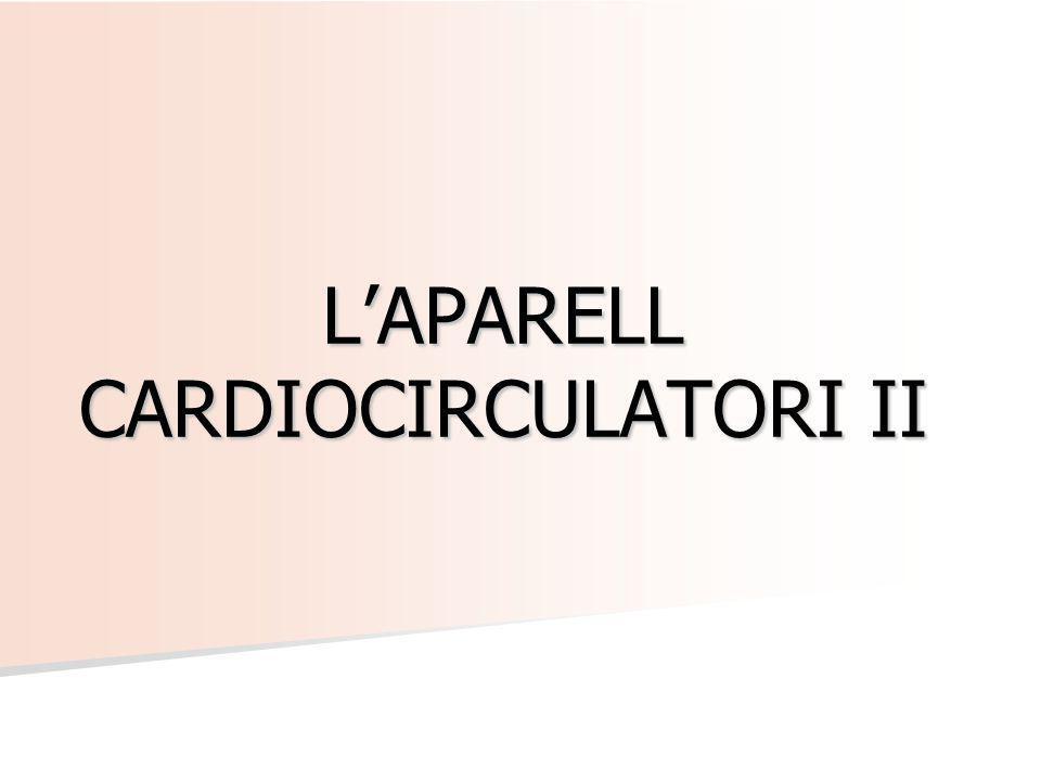 LAPARELL CARDIOCIRCULATORI II