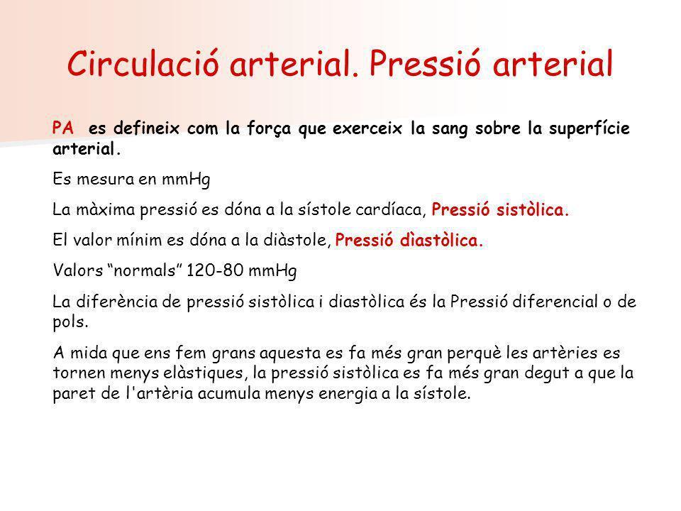 Circulació arterial. Pressió arterial PA es defineix com la força que exerceix la sang sobre la superfície arterial. Es mesura en mmHg La màxima press