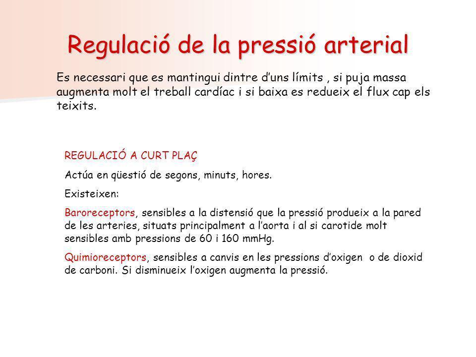 Regulació de la pressió arterial Es necessari que es mantingui dintre duns límits, si puja massa augmenta molt el treball cardíac i si baixa es reduei