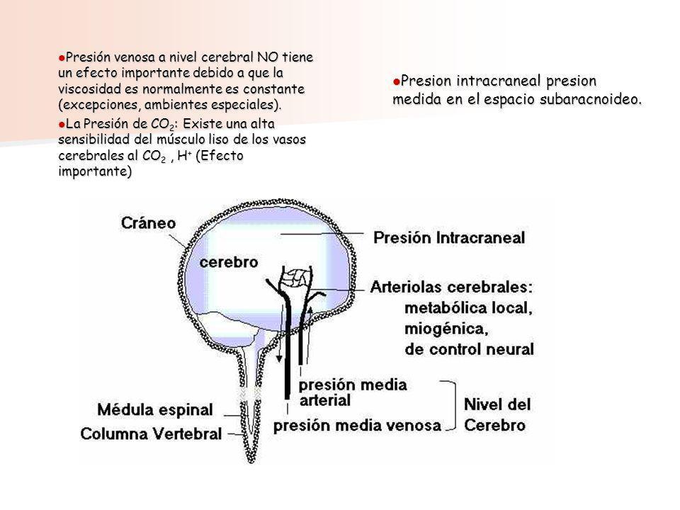 Presión venosa a nivel cerebral NO tiene un efecto importante debido a que la viscosidad es normalmente es constante (excepciones, ambientes especiale