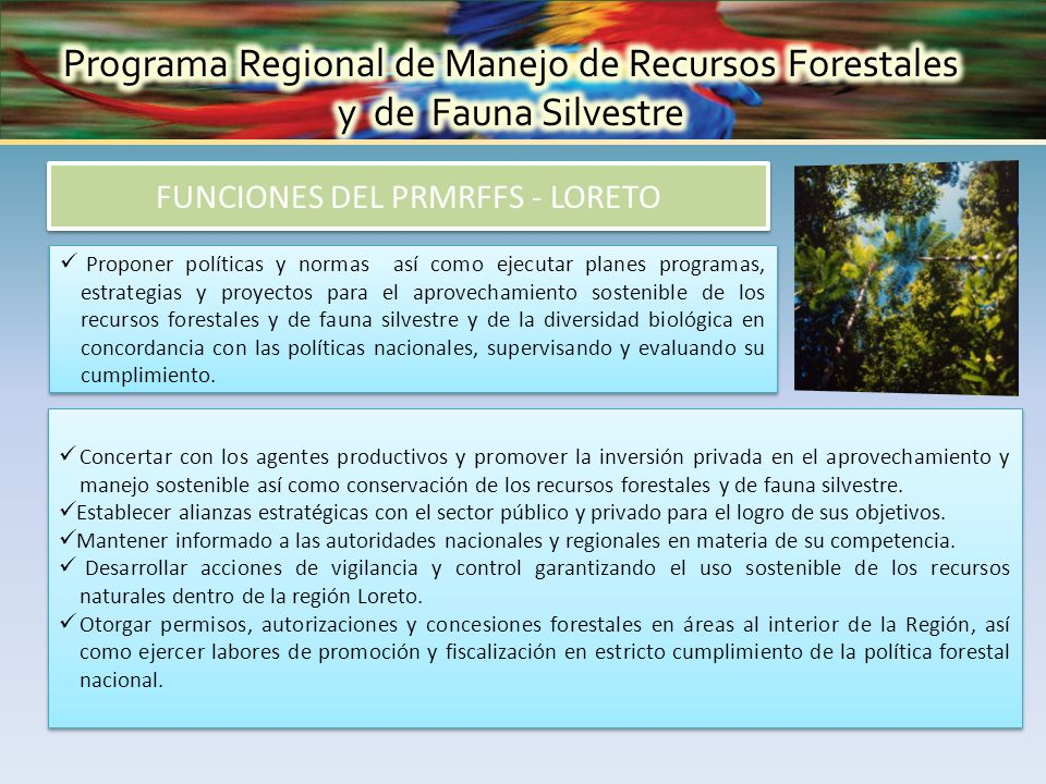Proponer políticas y normas así como ejecutar planes programas, estrategias y proyectos para el aprovechamiento sostenible de los recursos forestales y de fauna silvestre y de la diversidad biológica en concordancia con las políticas nacionales, supervisando y evaluando su cumplimiento.