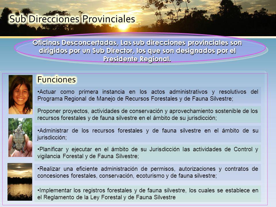 Oficinas Desconcertadas, Las sub direcciones provinciales son dirigidos por un Sub Director, los que son designados por el Presidente Regional.