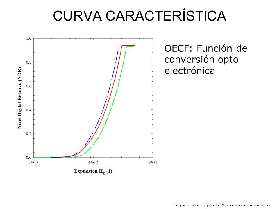 CURVA CARACTERÍSTICA La película digital- Curva característica OECF: Función de conversión opto electrónica Relaciona los niveles de brillo de la escena, con la salida digital.