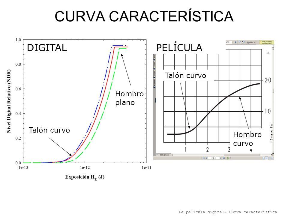 CURVA CARACTERÍSTICA La película digital- Curva característica Hombro plano Talón curvo DIGITAL Hombro curvo Talón curvo PELÍCULA