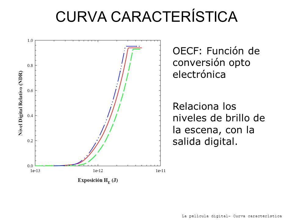 CURVA CARACTERÍSTICA La película digital- Curva característica OECF: Función de conversión opto electrónica Relaciona los niveles de brillo de la esce
