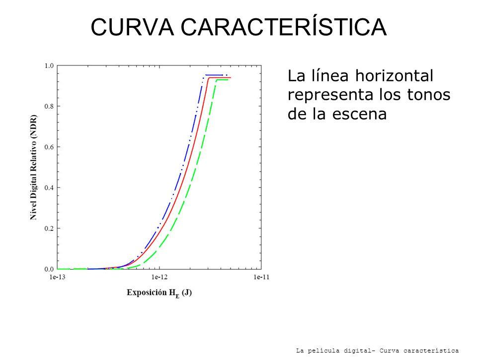 CURVA CARACTERÍSTICA La película digital- Curva característica La línea horizontal representa los tonos de la escena