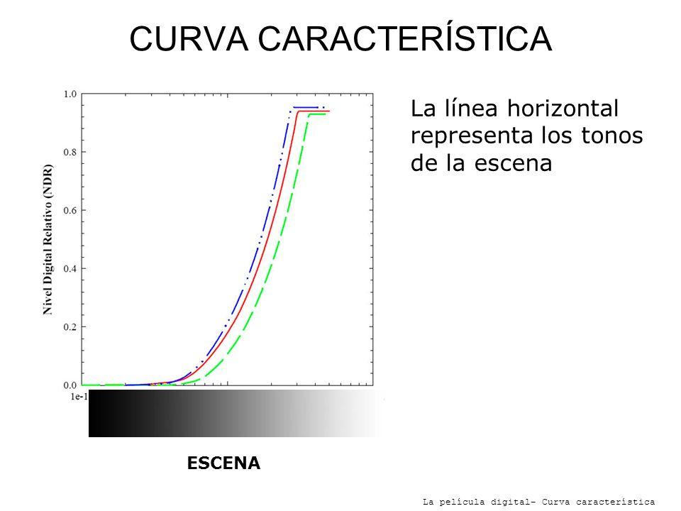 CURVA CARACTERÍSTICA La película digital- Curva característica SombrasESCENA La línea horizontal representa los tonos de la escena A la izquierda las sombras