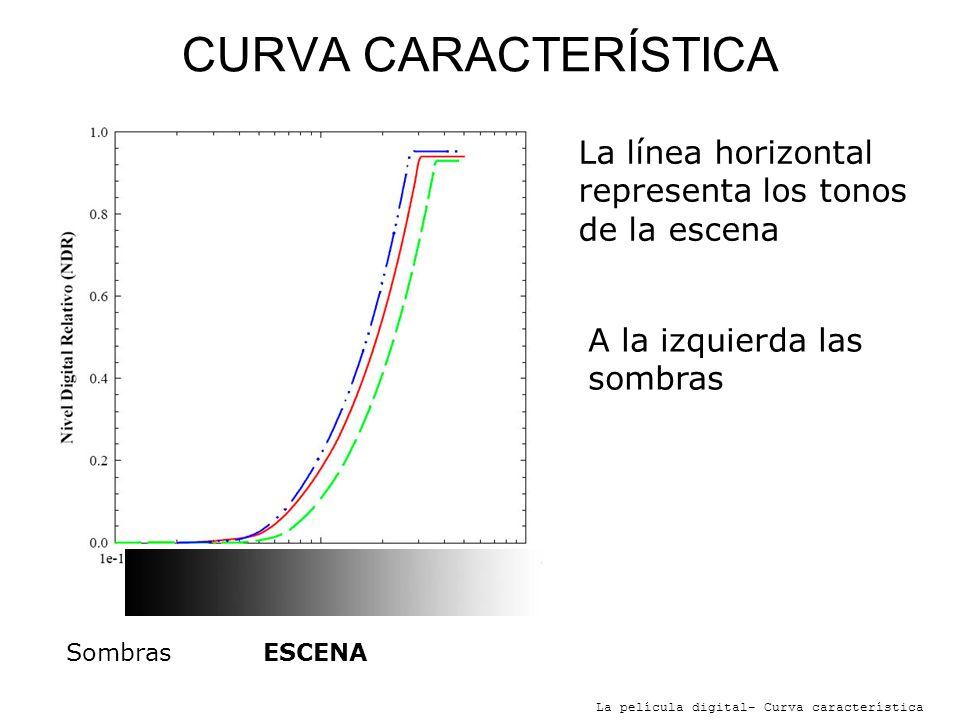 CURVA CARACTERÍSTICA La película digital- Curva característica SombrasLucesESCENA La línea horizontal representa los tonos de la escena A la izquierda las sombras A la derecha las luces