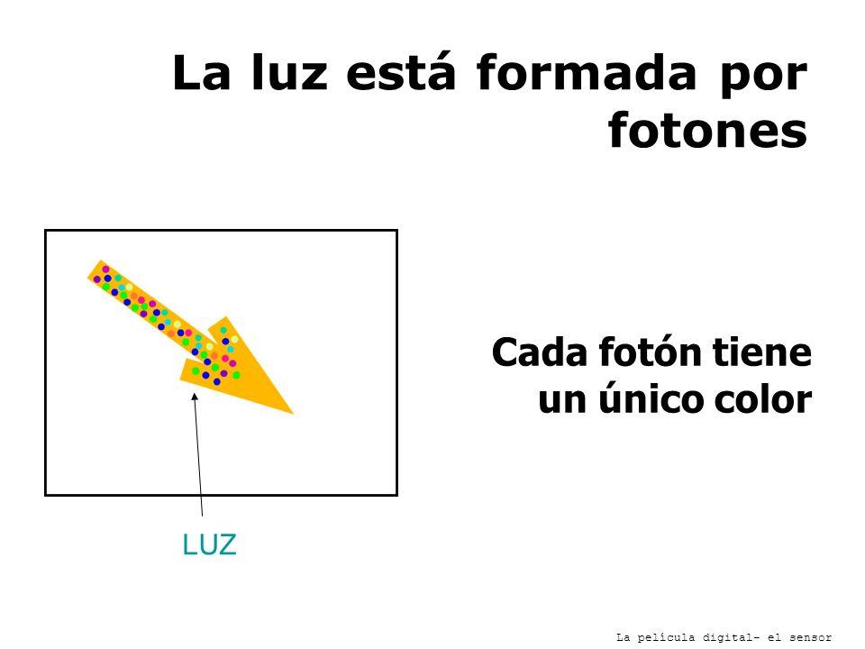 La luz está formada por fotones Cada fotón tiene un único color La película digital- el sensor LUZ