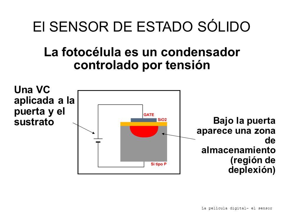 El SENSOR DE ESTADO SÓLIDO La película digital- el sensor Bajo la puerta aparece una zona de almacenamiento (región de deplexión) La fotocélula es un