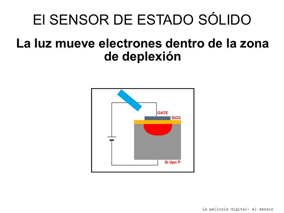 El SENSOR DE ESTADO SÓLIDO La película digital- el sensor La luz mueve electrones dentro de la zona de deplexión