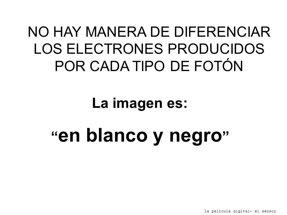 NO HAY MANERA DE DIFERENCIAR LOS ELECTRONES PRODUCIDOS POR CADA TIPO DE FOTÓN La película digital- el sensor La imagen es: en blanco y negro