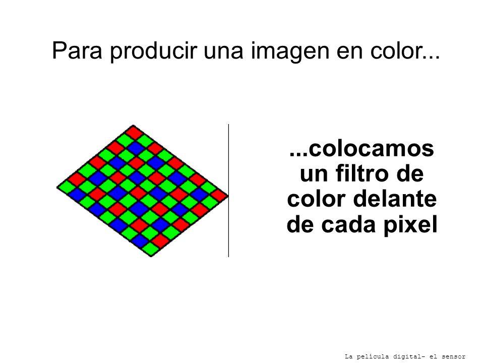 Para producir una imagen en color... La película digital- el sensor...colocamos un filtro de color delante de cada pixel