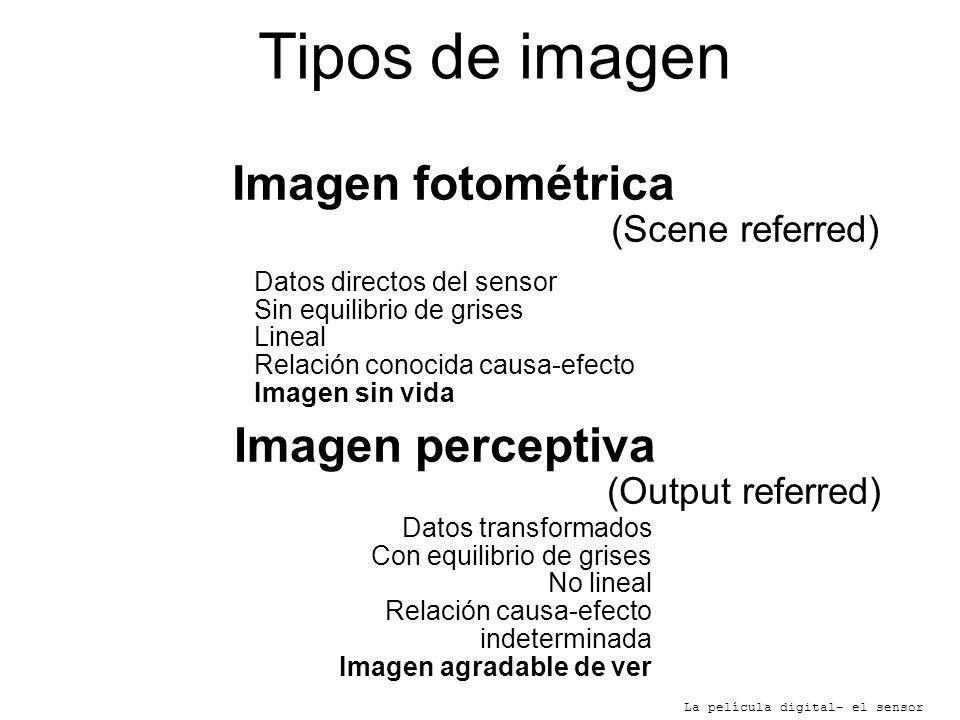 Tipos de imagen La película digital- el sensor Imagen fotométrica (Scene referred) Imagen perceptiva (Output referred) Datos directos del sensor Sin e