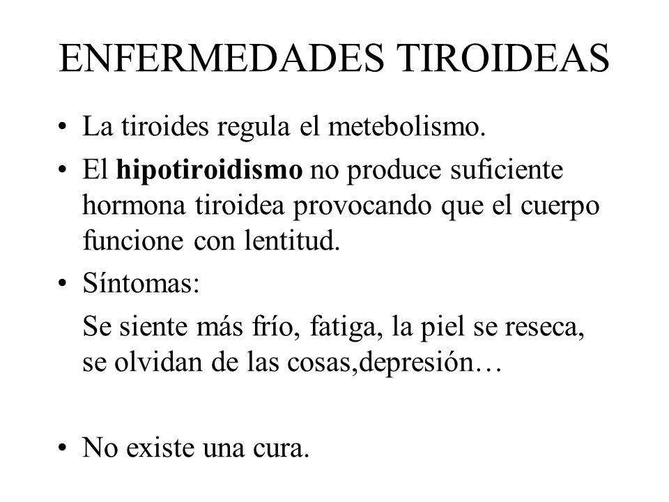 ENFERMEDADES TIROIDEAS La tiroides regula el metebolismo. El hipotiroidismo no produce suficiente hormona tiroidea provocando que el cuerpo funcione c