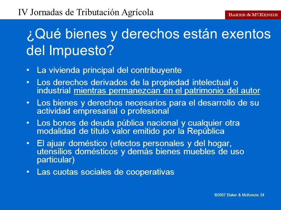 IV Jornadas de Tributación Agrícola ©2007 Baker & McKenzie 24 ¿Qué bienes y derechos están exentos del Impuesto.