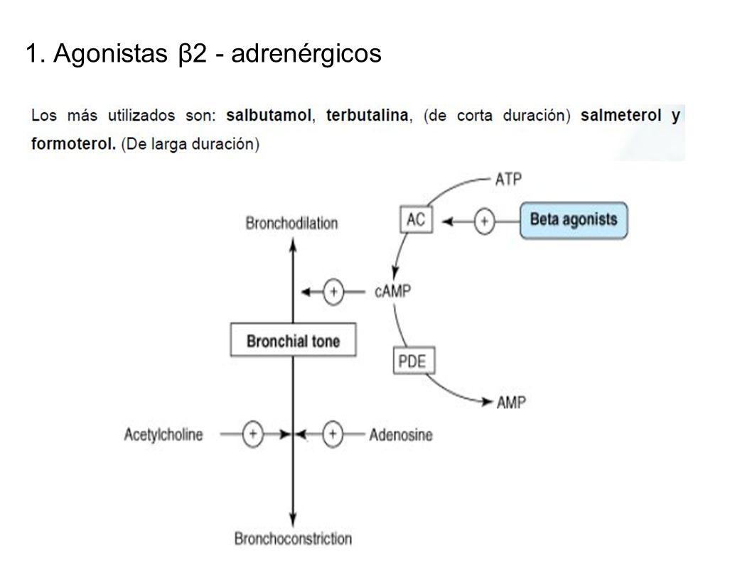 1. Agonistas β2 - adrenérgicos