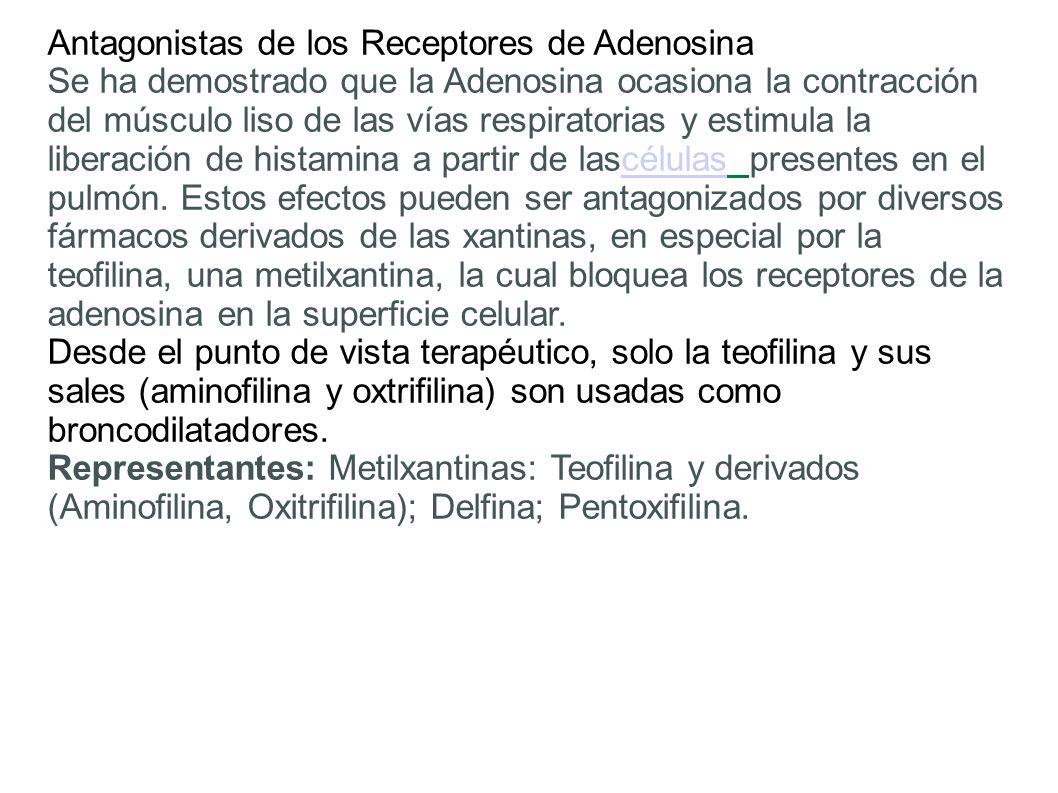 Antagonistas de los Receptores de Adenosina Se ha demostrado que la Adenosina ocasiona la contracción del músculo liso de las vías respiratorias y est