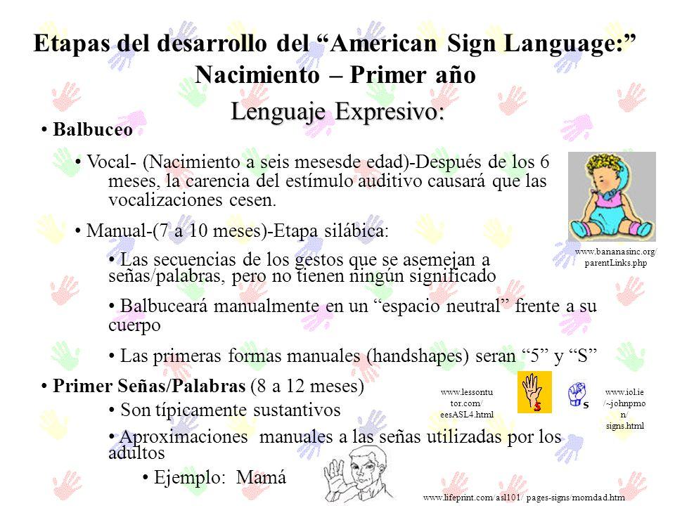 Etapas del desarrollo del American Sign Language: Nacimiento – Primer año Balbuceo Vocal- (Nacimiento a seis mesesde edad)-Después de los 6 meses, la
