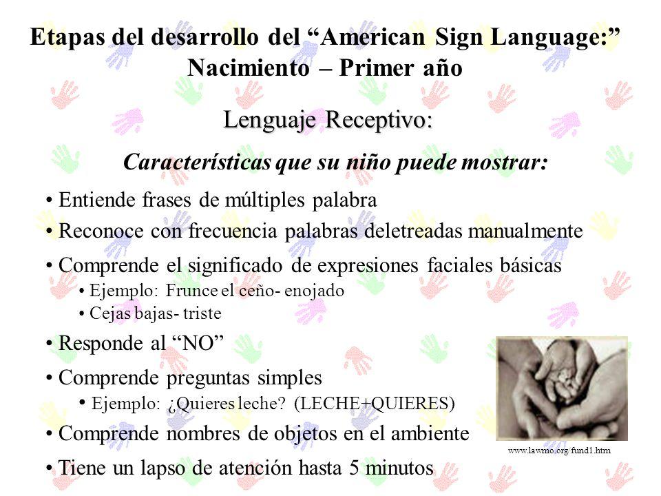 Etapas del desarrollo del American Sign Language: Nacimiento – Primer año Lenguaje Receptivo: Entiende frases de múltiples palabra Reconoce con frecue