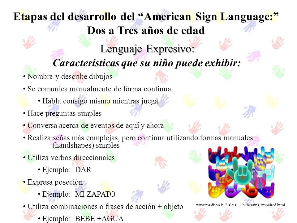 Etapas del desarrollo del American Sign Language: Dos a Tres años de edad Lenguaje Expresivo: Nombra y describe dibujos Se comunica manualmente de for