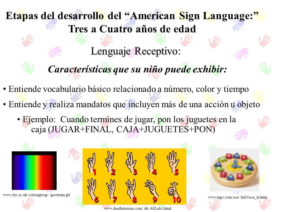 Etapas del desarrollo del American Sign Language: Tres a Cuatro años de edad Lenguaje Receptivo: Entiende vocabulario básico relacionado a número, col