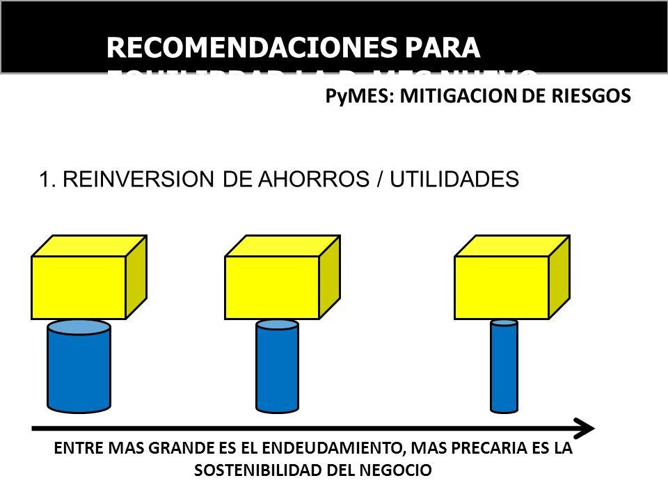 RECOMENDACIONES PARA EQUILIBRAR LA PyMES NUEVO ORDEN FINANCIERO INTERNACIONAL PyMES: MITIGACION DE RIESGOS 1. REINVERSION DE AHORROS / UTILIDADES ENTR