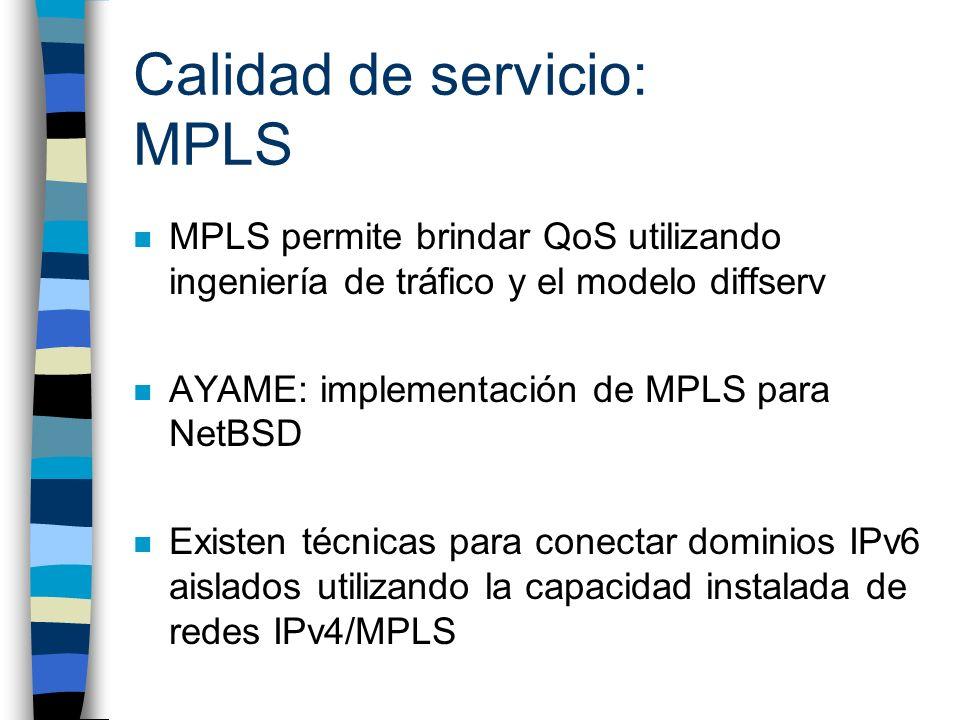Calidad de servicio: MPLS n MPLS permite brindar QoS utilizando ingeniería de tráfico y el modelo diffserv n AYAME: implementación de MPLS para NetBSD