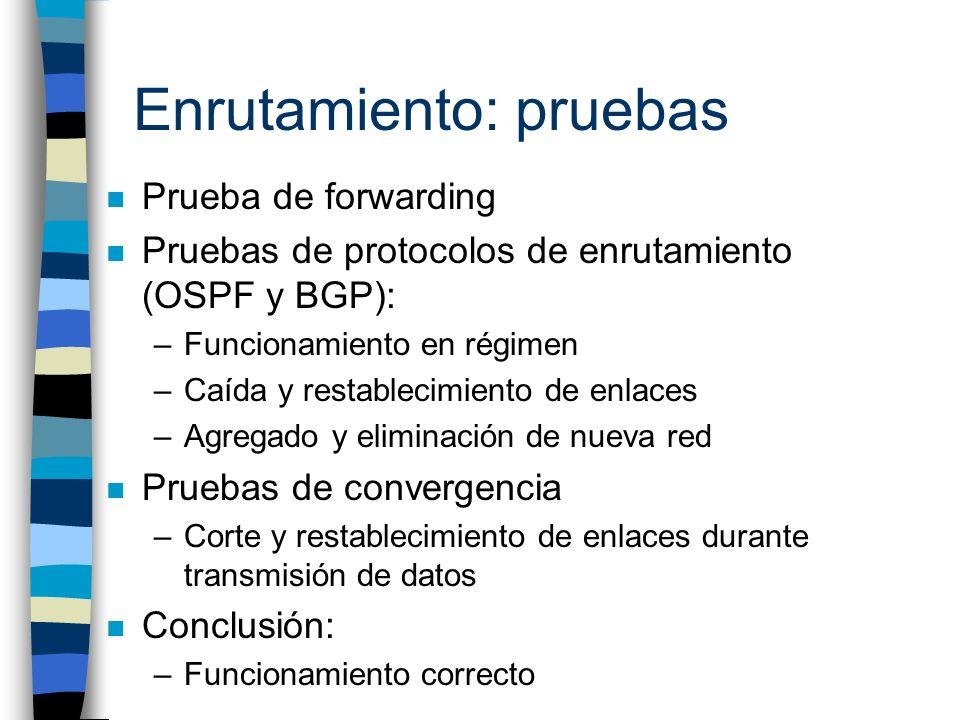 Enrutamiento: pruebas n Prueba de forwarding n Pruebas de protocolos de enrutamiento (OSPF y BGP): –Funcionamiento en régimen –Caída y restablecimient