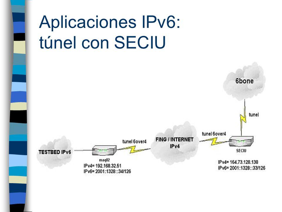Aplicaciones IPv6: sitio web n Se utilizó servidor web Apache compilado con soporte IPv6 n Accesible públicamente sólo a través del 6bone n Contiene información concerniente al proyecto
