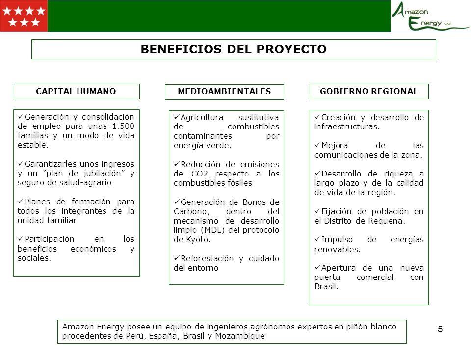 2.- ESQUEMA DE ESTRUCTURA SOCIETARIA ESQUEMA AGROINDUSTRIAL DE DESARROLLO VIVERO DE SEMILLAS PLANTACION 10.000 Has PLANTA DE PRENSADO PLANTA DE BIODIESEL VENTA DE BIODIESEL GLICEROL TORTA I + D + i PLANTA DE BIOMASA ELECTRICIDAD PLANTA DE BIOGAS ELECTRICIDAD MADERA DE DESMONTE INICIAL VENTA A EMPRESAS MADERERAS A PETROLERAS RECOLECCION DE GRANO ACEITE A RED ELECTRICA DEL PERU