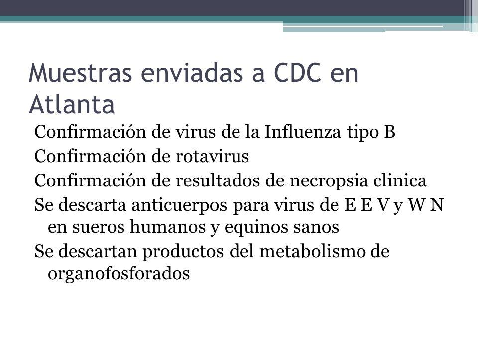 Muestras enviadas a CDC en Atlanta Confirmación de virus de la Influenza tipo B Confirmación de rotavirus Confirmación de resultados de necropsia clin