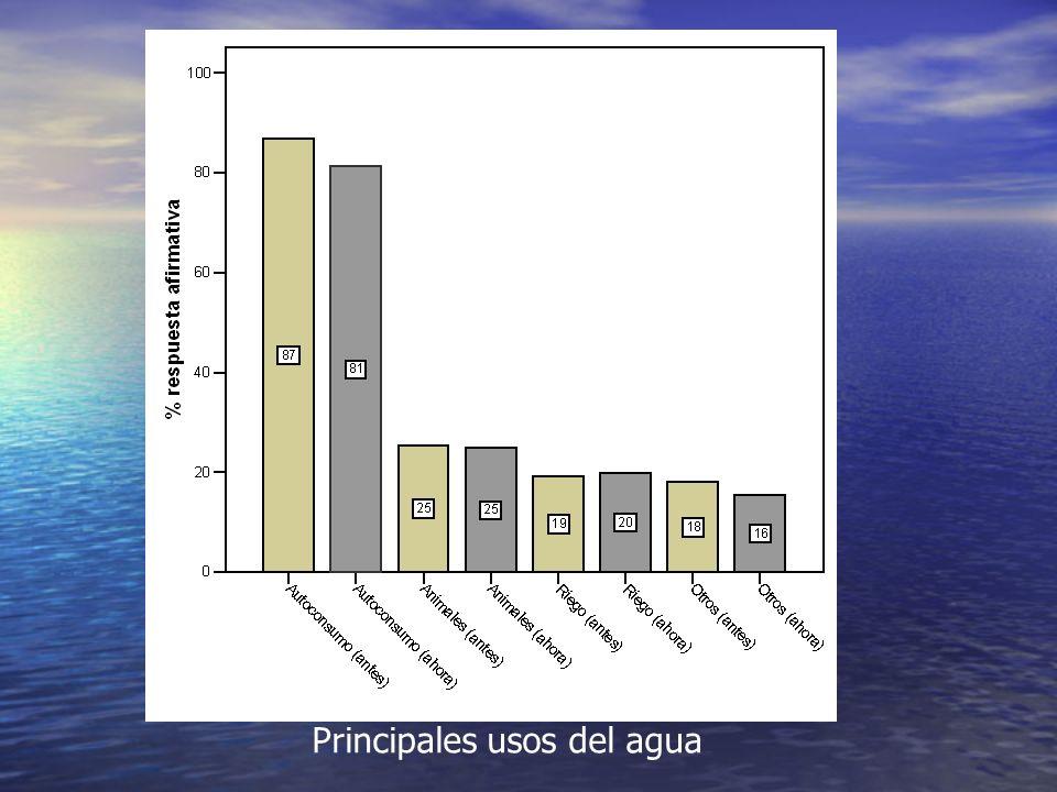 Principales usos del agua
