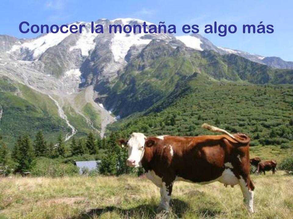 Conocer la montaña es algo más