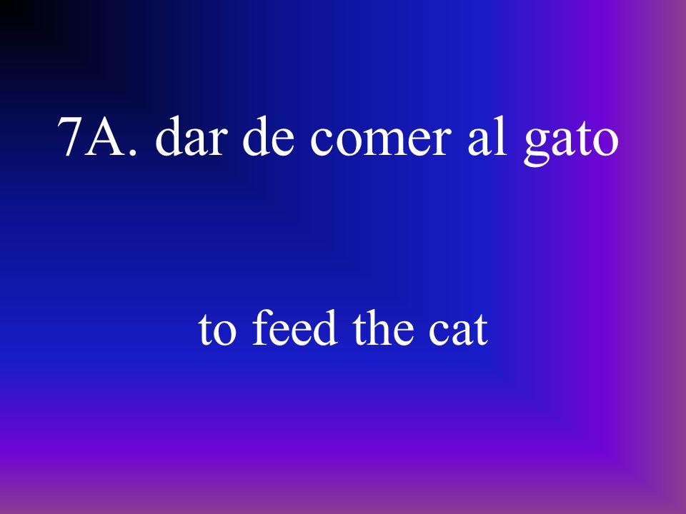 7A. dar de comer al gato to feed the cat