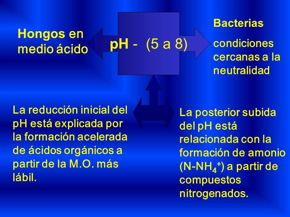 pH - (5 a 8) Hongos en medio ácido Bacterias condiciones cercanas a la neutralidad La reducción inicial del pH está explicada por la formación acelera