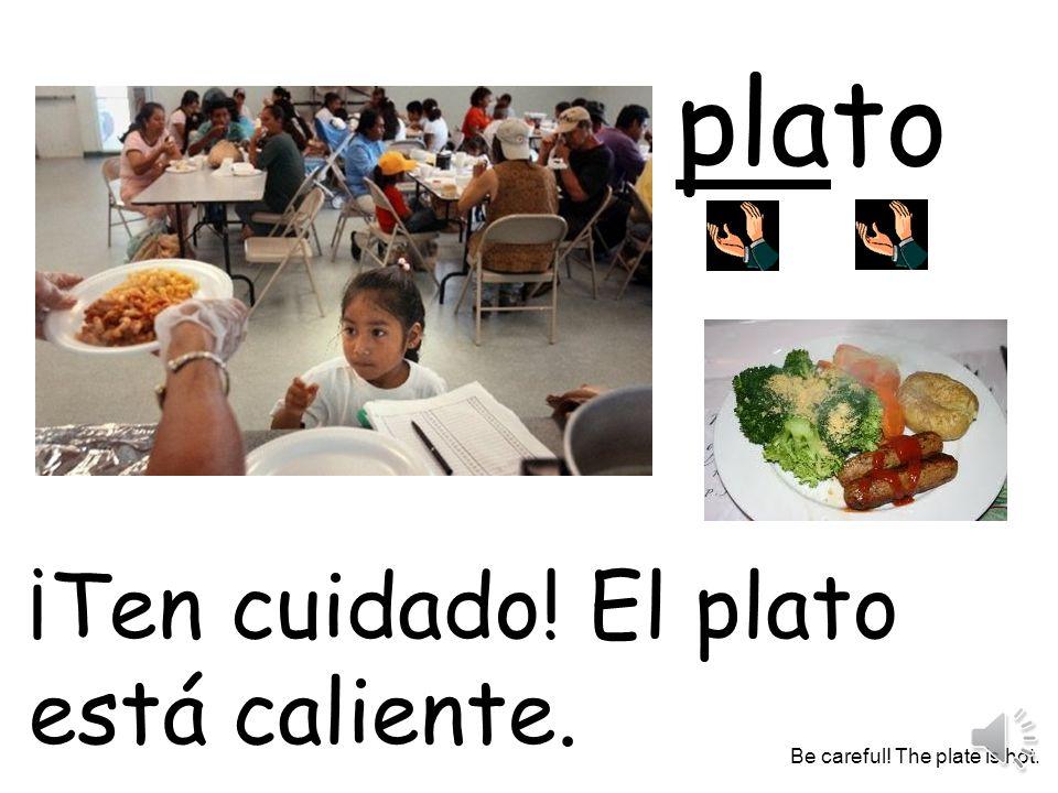 plato ¡Ten cuidado! El plato está caliente. Be careful! The plate is hot.