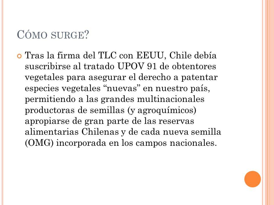 C ÓMO SURGE ? Tras la firma del TLC con EEUU, Chile debía suscribirse al tratado UPOV 91 de obtentores vegetales para asegurar el derecho a patentar e