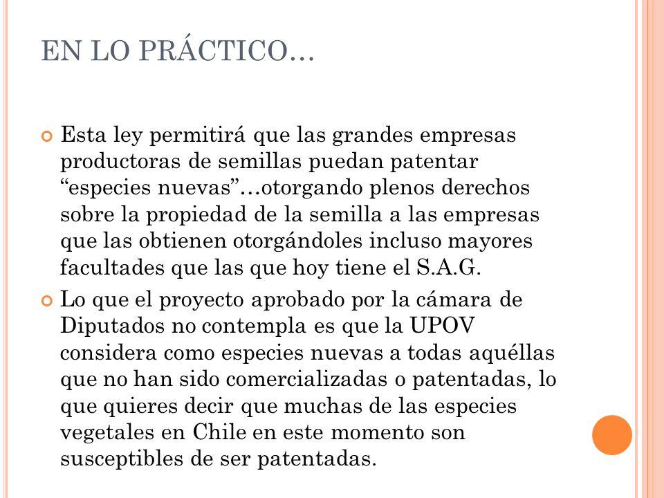EN LO PRÁCTICO… Esta ley permitirá que las grandes empresas productoras de semillas puedan patentar especies nuevas…otorgando plenos derechos sobre la