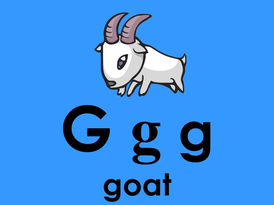 G g g goat