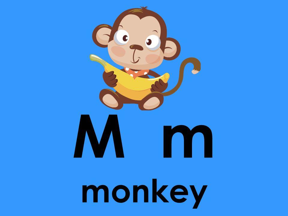 M m monkey