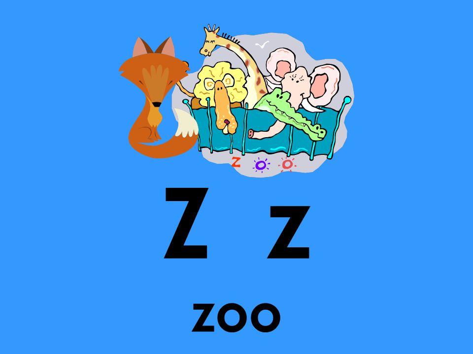 Z z zoo