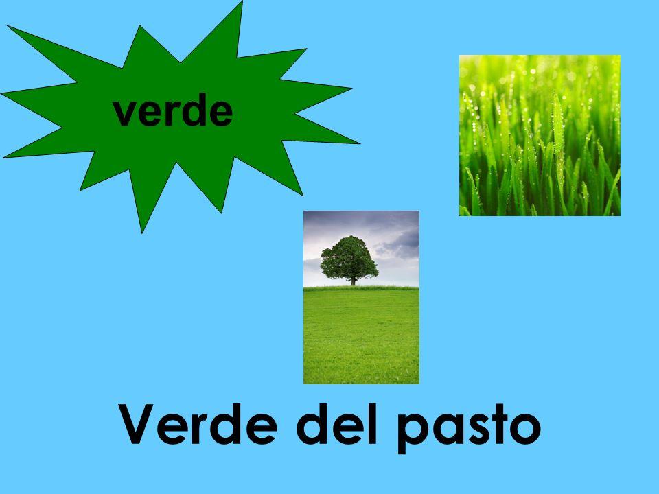 Verde del pasto verde