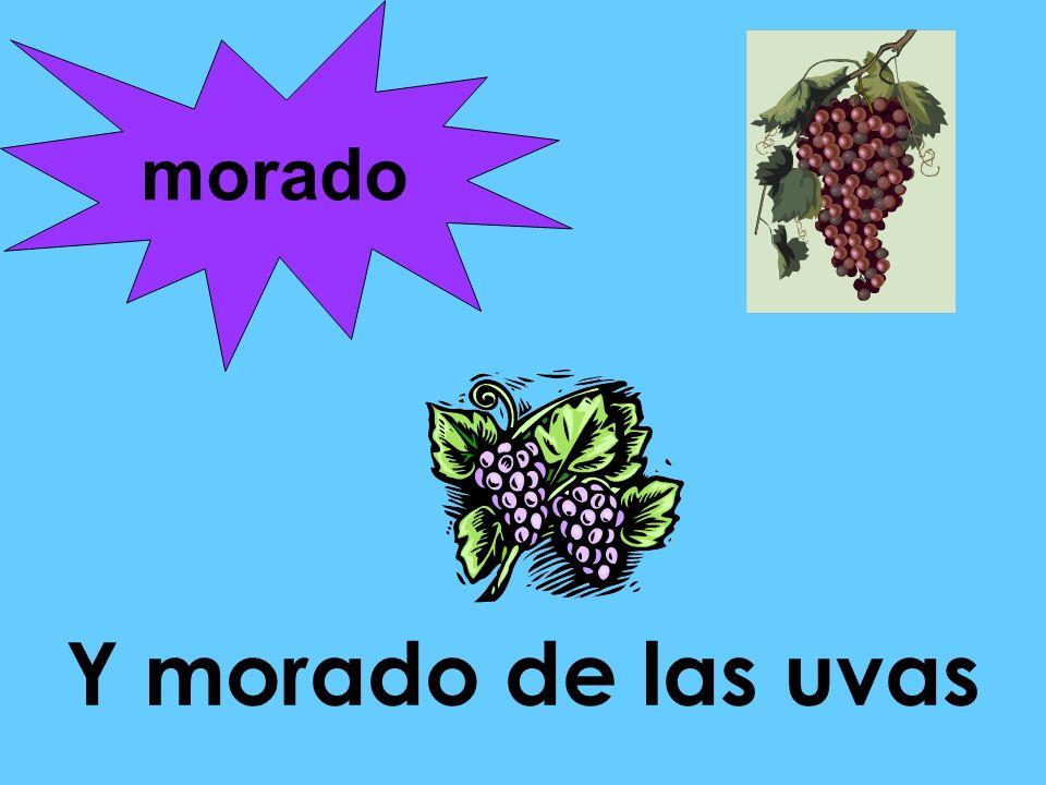 Y morado de las uvas morado